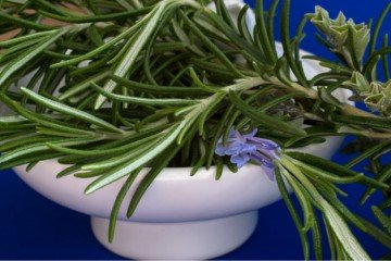 How to make essential oils from dried herbs rosemary in a bowl