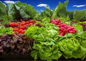best vegetables to grow in shade leafy greens