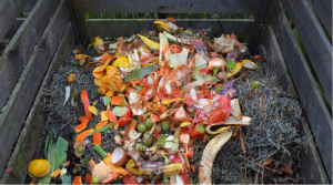 can bread be composted fruit waste