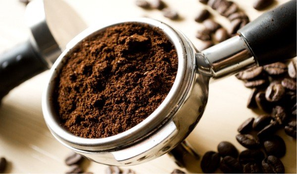 how to get rid of ants naturally coffee grounds