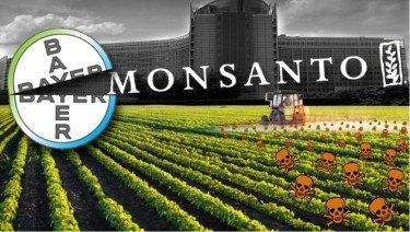 Monsanto Monopoly? The facts Explained 2