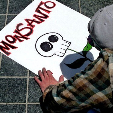 Monsanto Monopoly skull and flower drawing