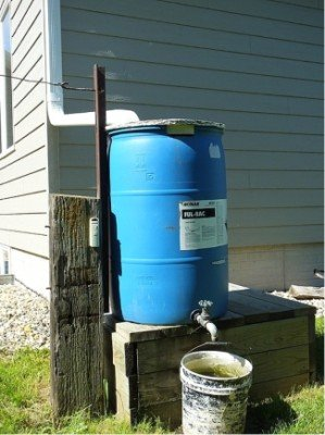 how to collect rainwater for gardening rainwater barrel on porch