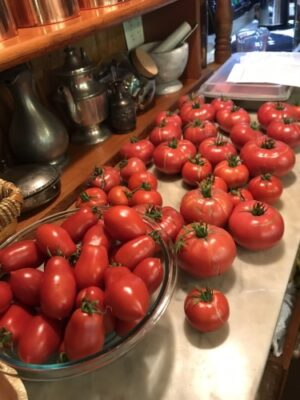 roma and beefsteak tomatoes on a kitchen counter