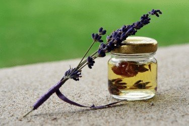 lavender infused oil in jar